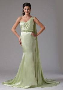 Dazzling Watteau Train Prom Holiday Dress Single Shoulder in Canoas