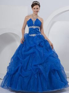 Organza Beaded and Appliques Quinceanera Dress Hand Made Flowers