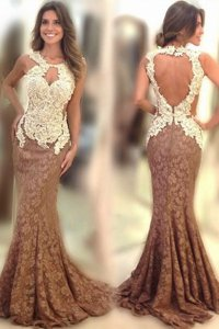 Perfect Mermaid Scoop Lace Sleeveless Appliques Backless Evening Dress with Brown Sweep Train