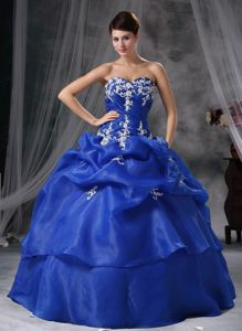 Appliques and Pick ups Accent Blue Organza Quinces Dresses 2014