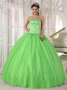 Roseville CA Beaded Taffeta Quinces Dresses in Spring Green 2014