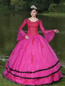 Appliqued Hot Pink Organza Dress for Quinceanera with Long Sleeves