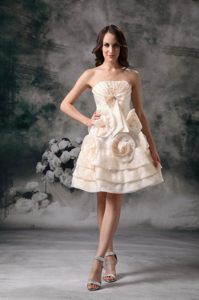 Champagne Mini Prom Holiday Dress with Handmade Flowers
