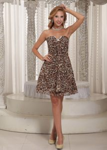 Sexy Leopard Prom formal Dress Strapless Mini-length in Caxias Do Su
