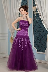 Tulle Column Strapless Embroidery Prom Dress Color for Choice